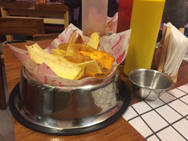 chips in a dog bowl
