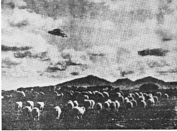 1954australia-80493.jpg