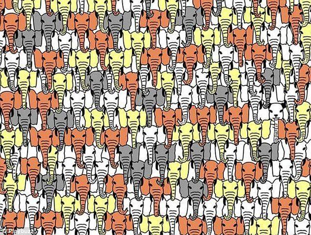 Elephant-Puzzle-63045.jpg