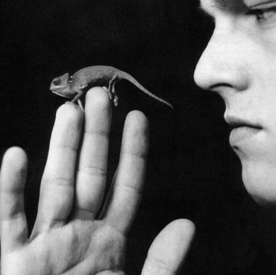 Leonardo DiCaprio poses with his lizard