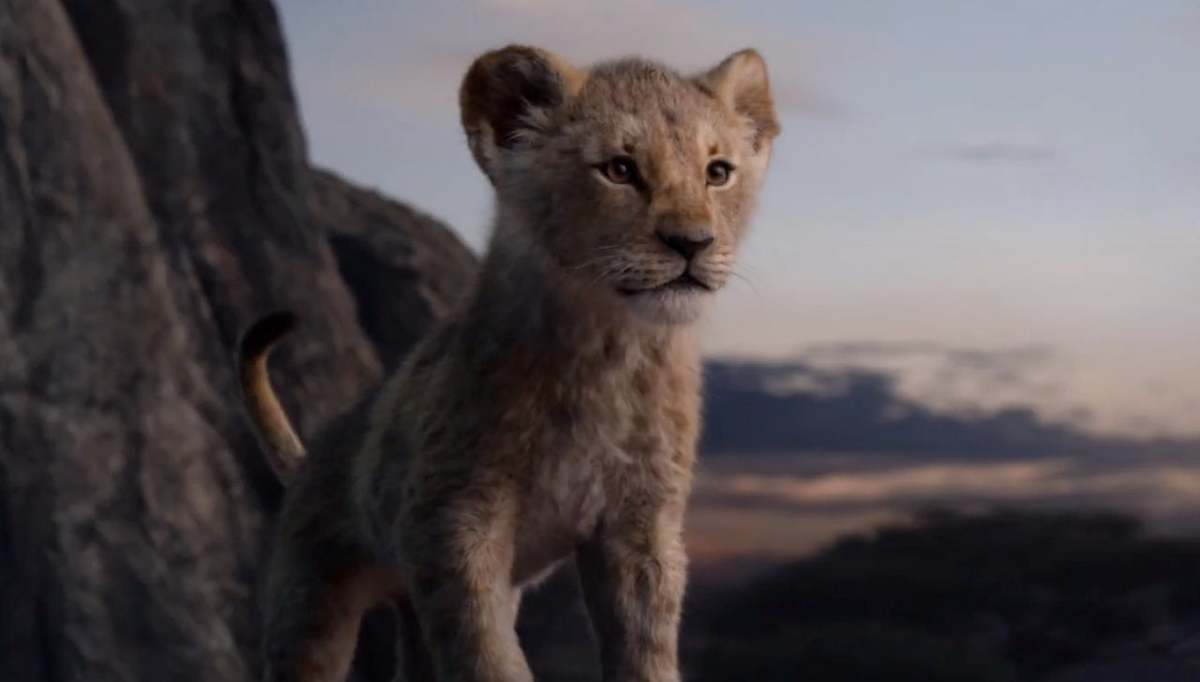 young simba has been brought to life in a live action remake of the disney classic the lion king