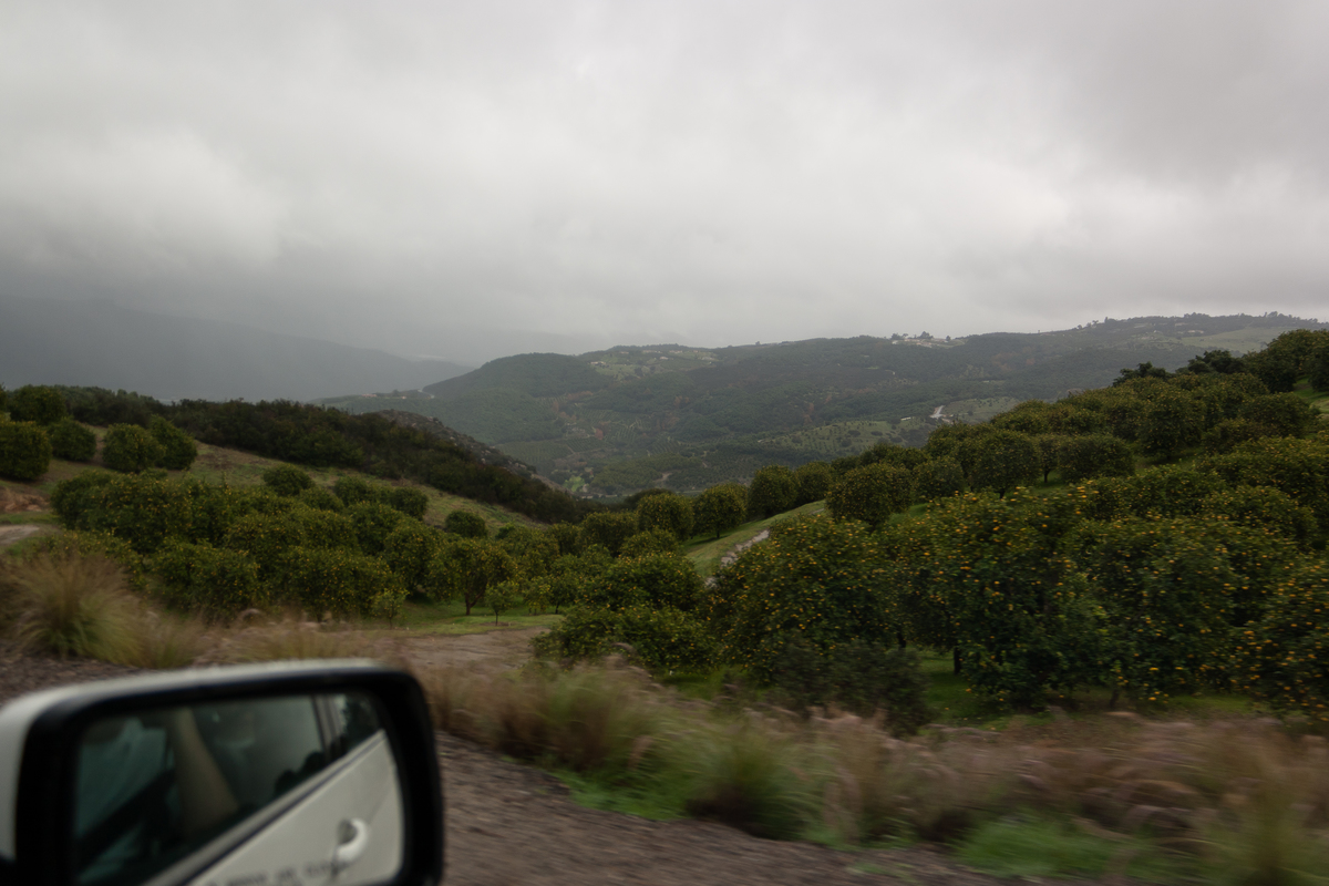 a photo taken out of the window on a road trip