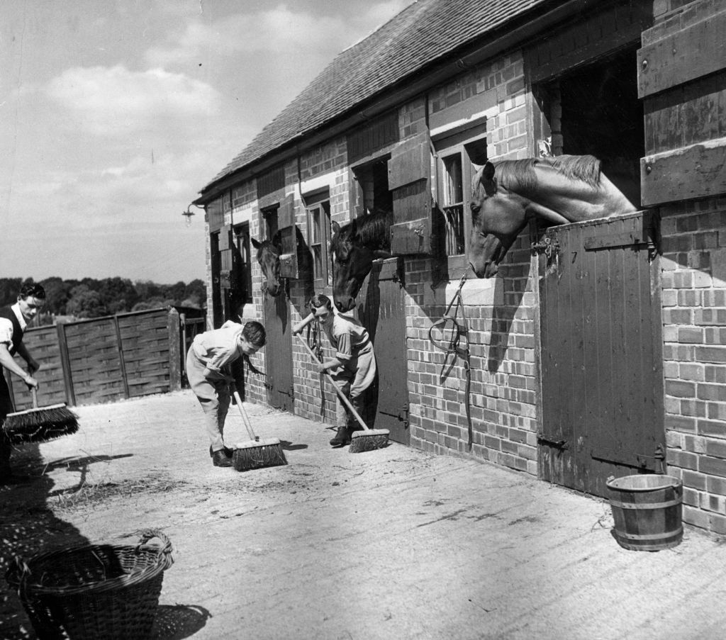 GettyImages-3163192 A young apprentice jockey Lester Piggott helps clear up the stable yard, watched with interest by the horses in their boxes