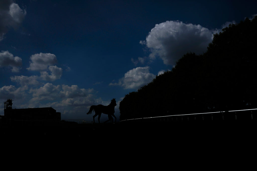 GettyImages-986178134 A general view as a runner makes its way back to the horsebox at Newmarket Racecourse