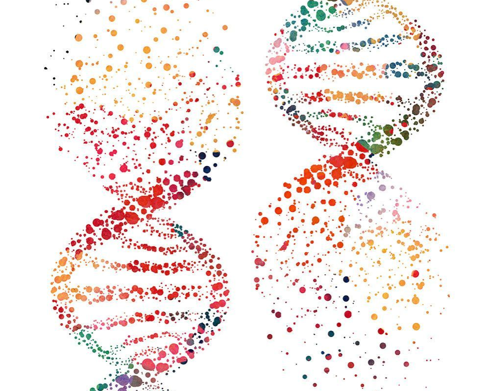 artwork of two DNA strands with multi-colored blotches