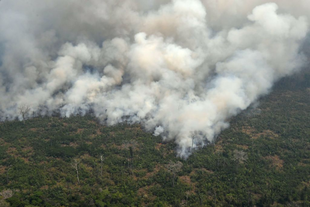 An aerial view shows a large mass of smoke billowing through the forest.