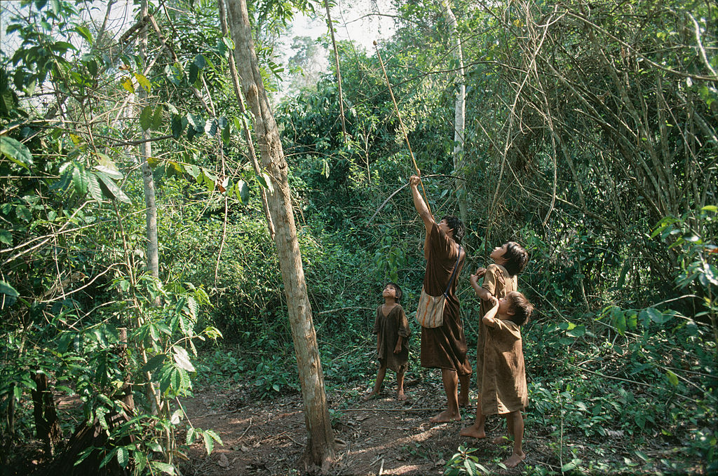 Three young indigenous watch as a older boy shoots an arrow into the treetops.