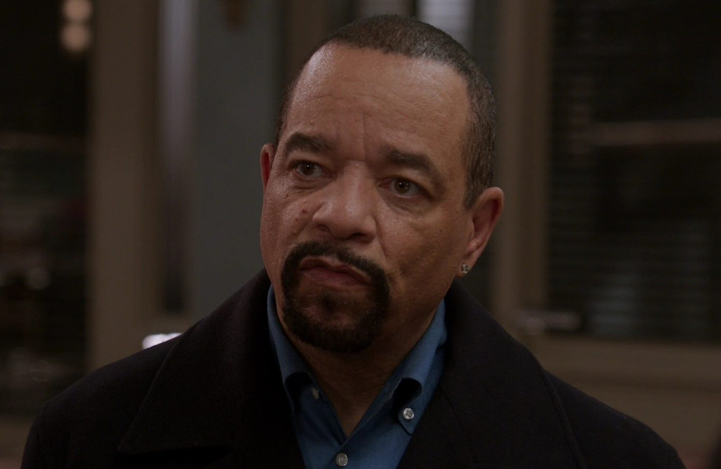 Ice-T as Detective Fin