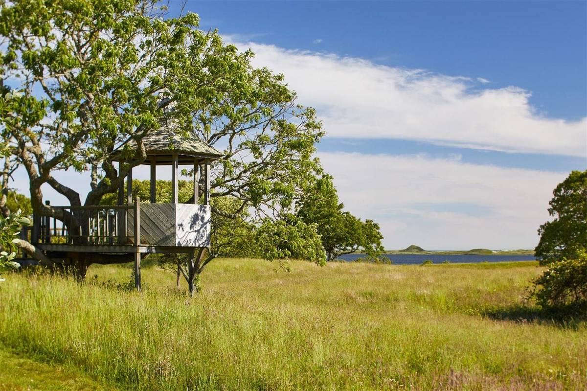 A gazebo-shaped treehouse overlooks the coast