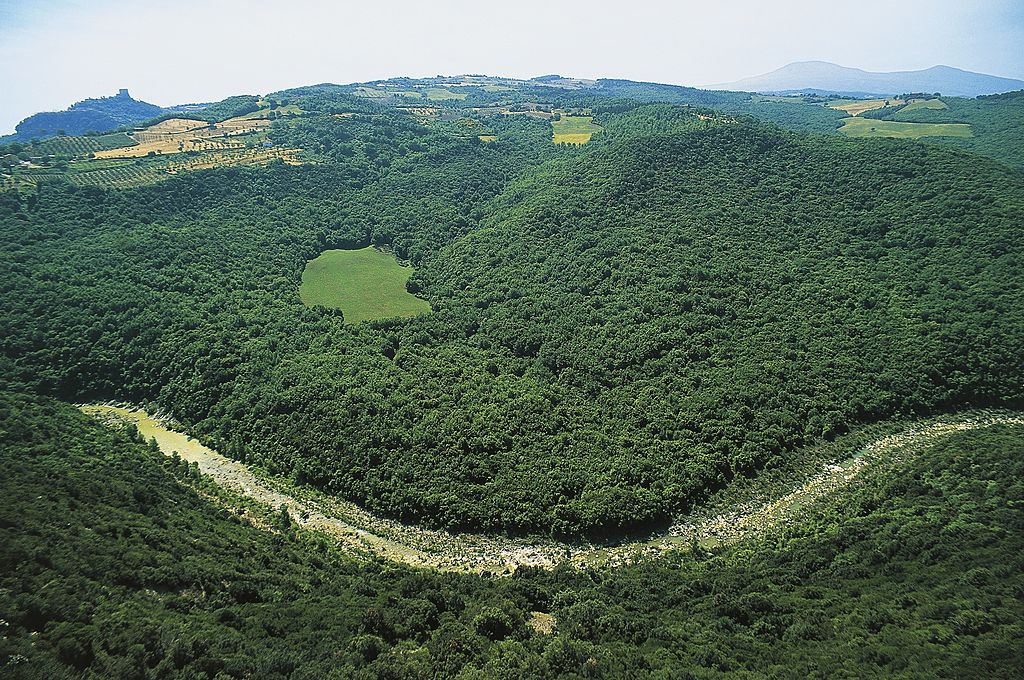 About 31.1% Of Italy Is Forest