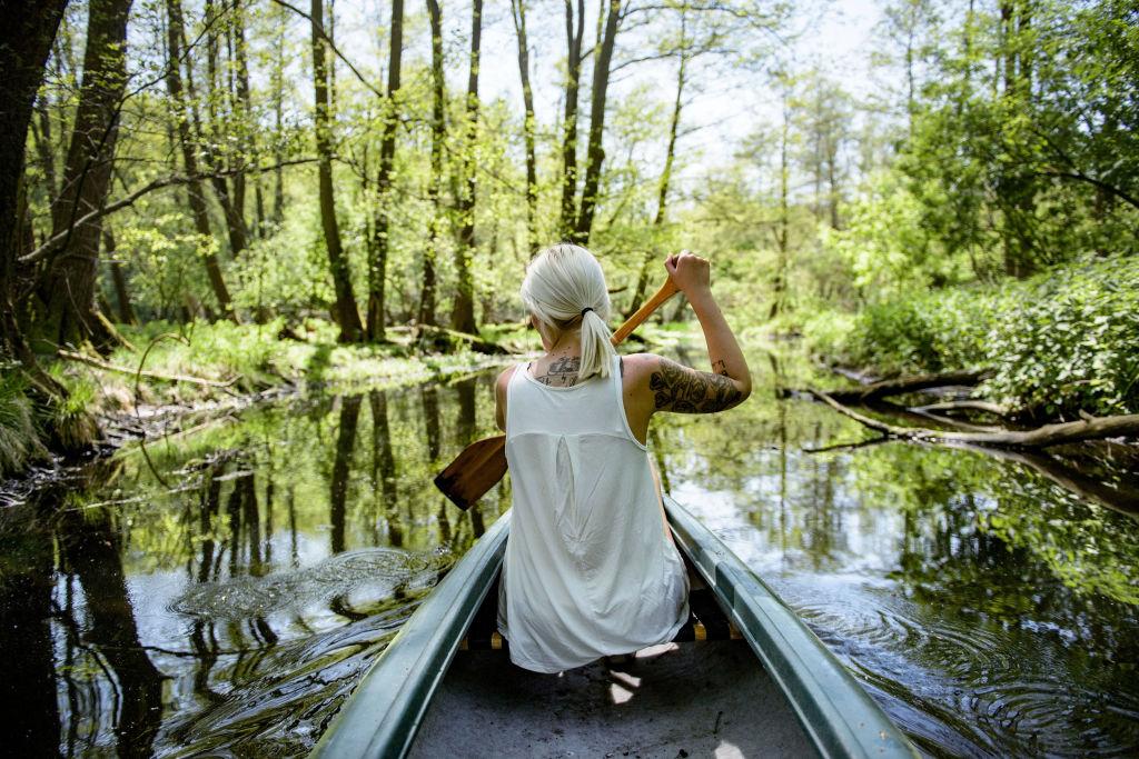 Living Close To Nature Lessens Mental Stress