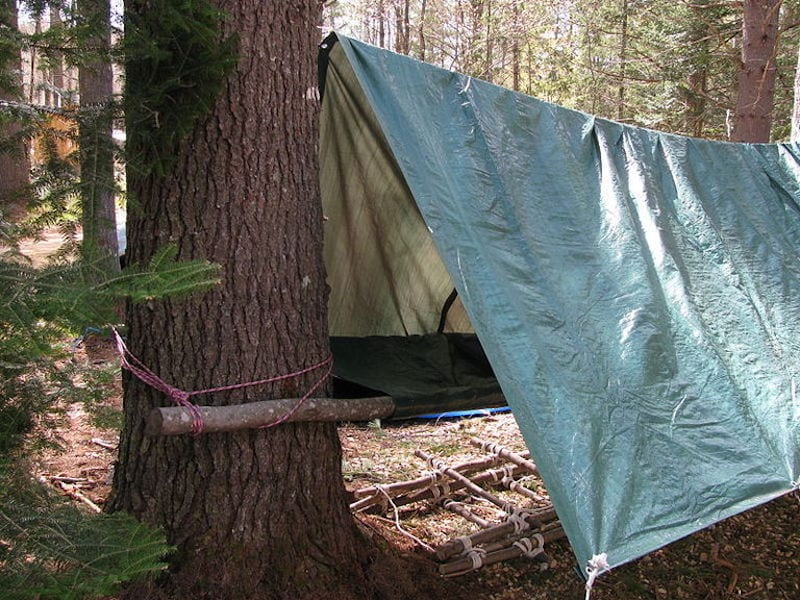 The Campsite Was Enough For Survival