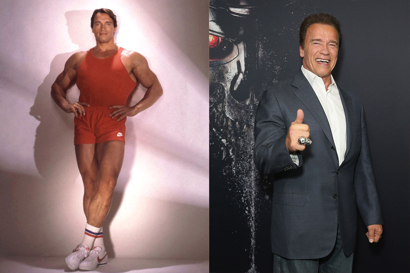 Arnold Schwarzenegger Has Had Quite A Diverse Career