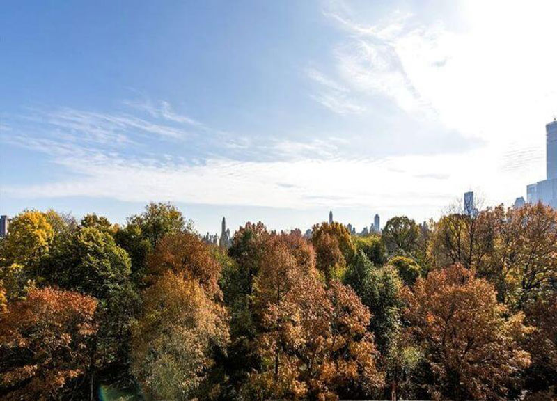 Sweeping-Views-Of-Central-Park