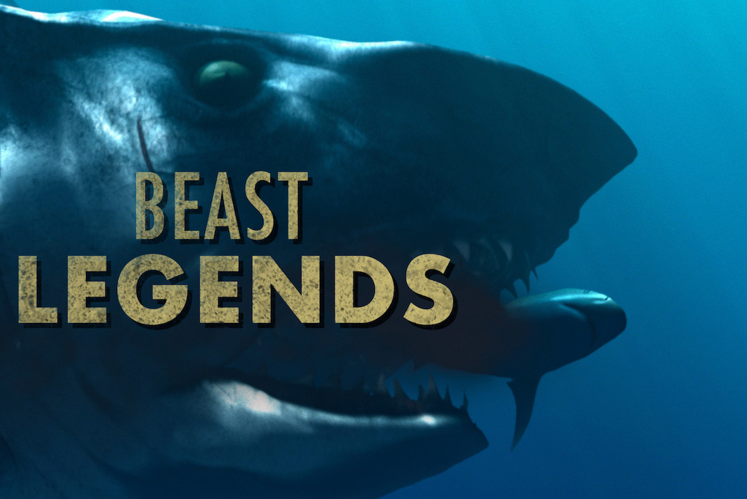 A giant shark is shone as the title screen for the show Beast Legends.