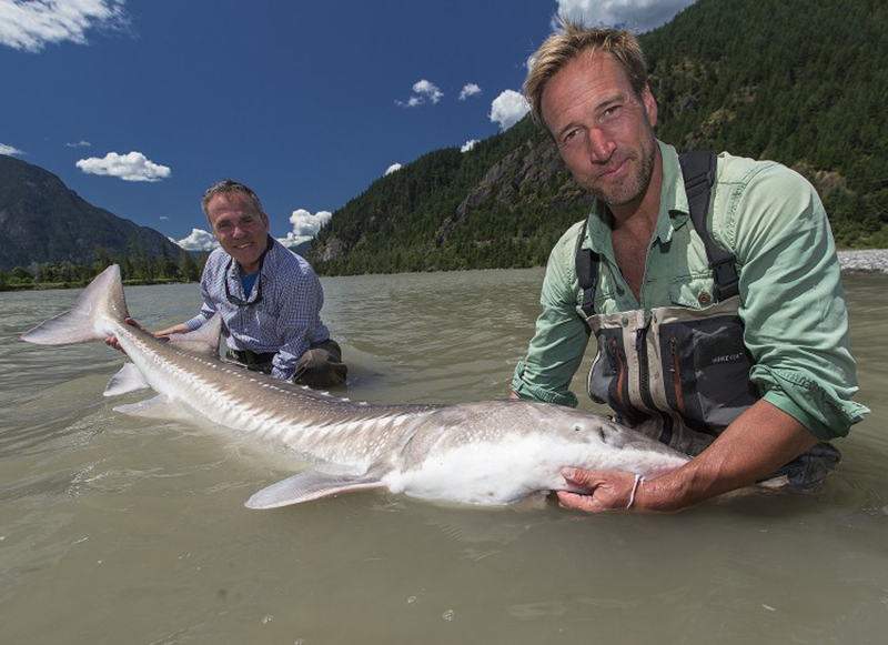 Fishermen show off the giant fish they caught in a river.