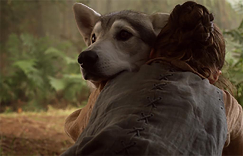 Dog as direwolf