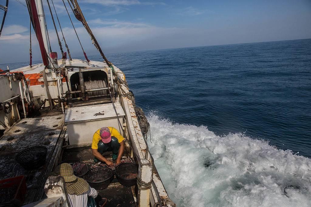 Fisherman working