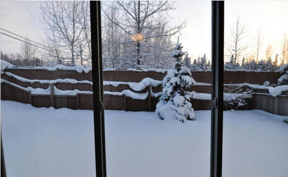 Pam Aus's snowy yard is seen though a window.