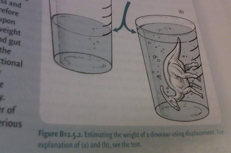 A textbook shows how to weigh dinosaurs by putting it in a glass of water.