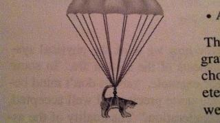 In a physics textbook, a diagram of a cat with a parachute is labeled