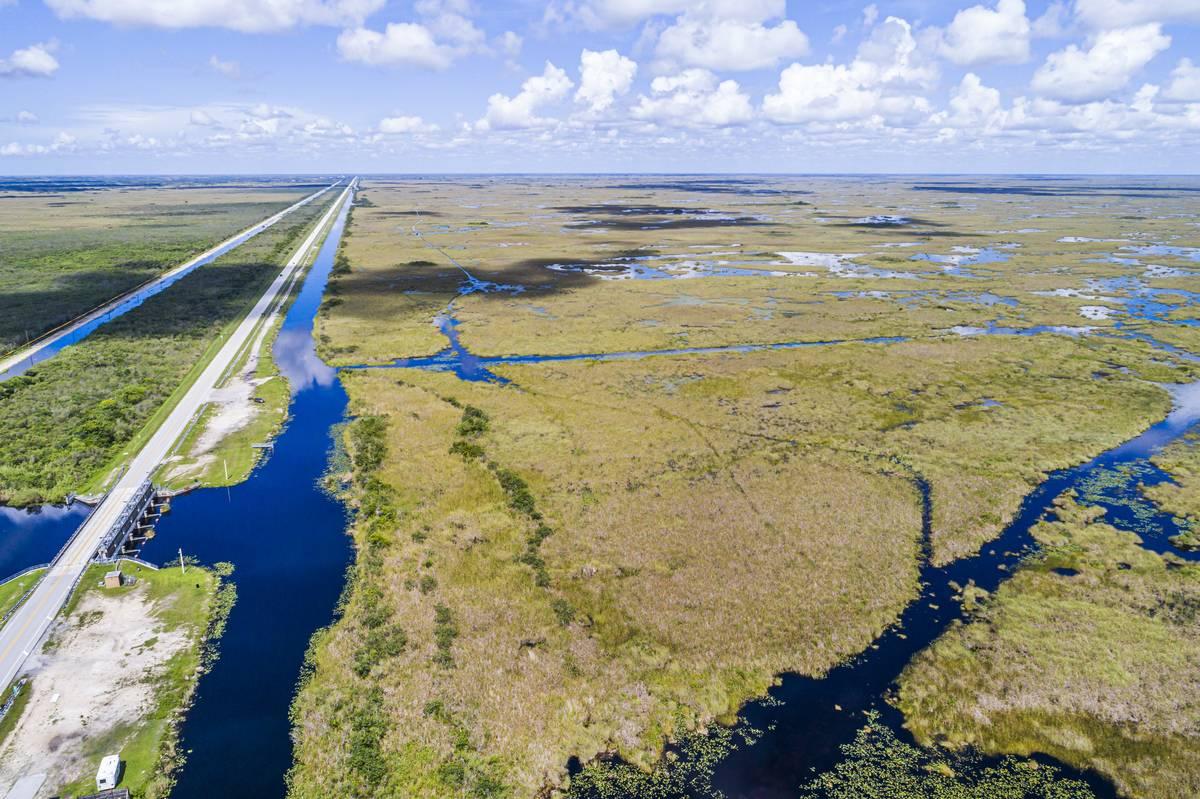 An aerial shot shows the Florida Everglades.