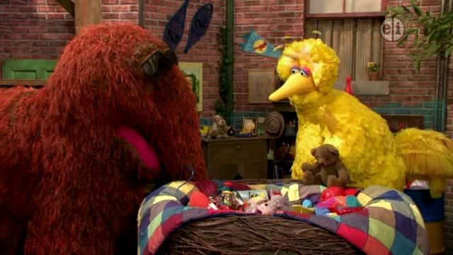 Big Bird's Teddy Bear