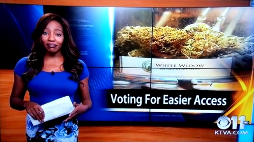 Reporter Gives Up Job For Cannabis Club