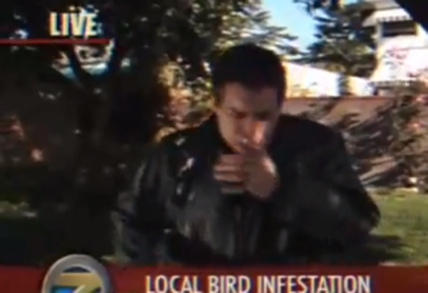 A New Way To Get Bird Flu