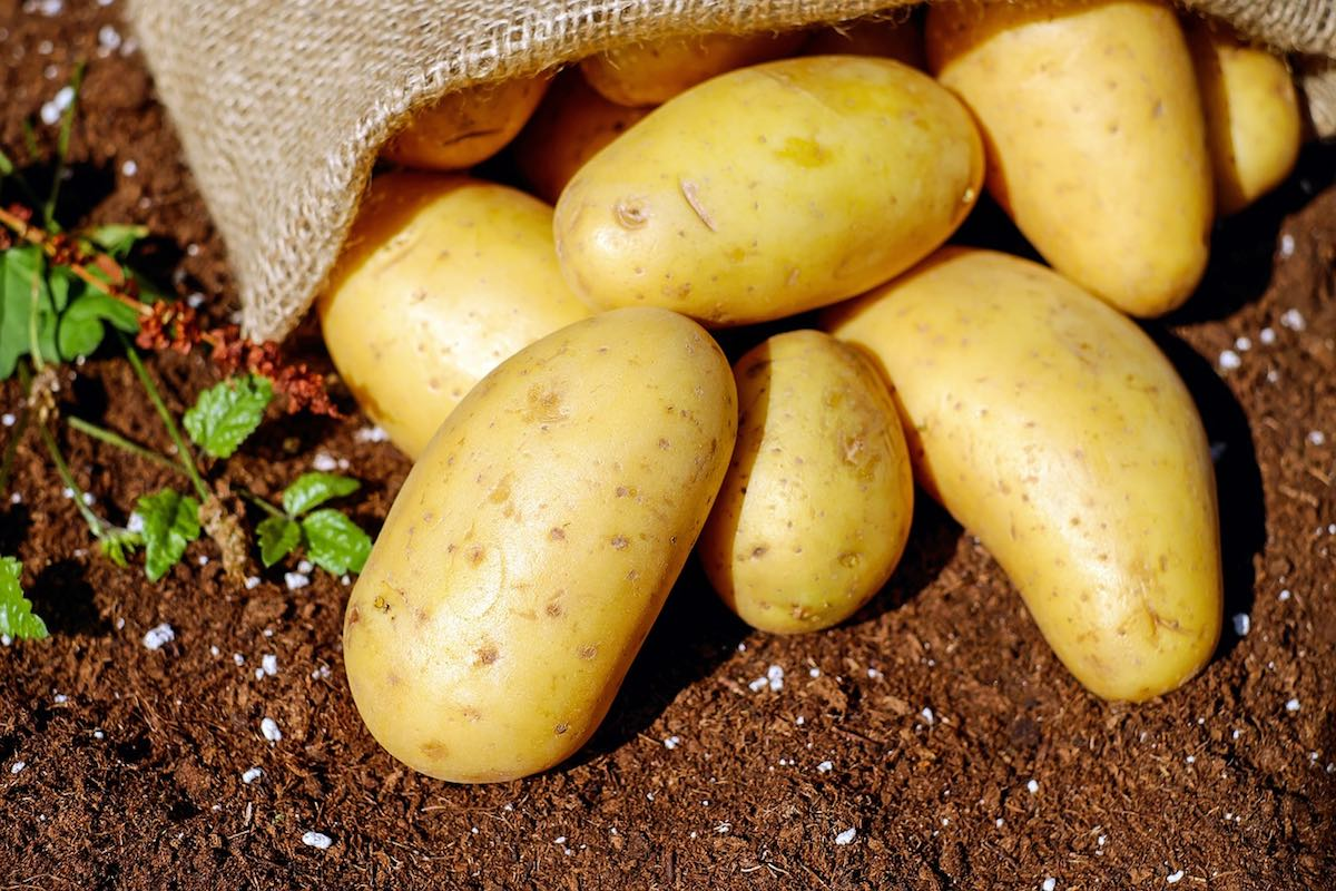 Don't Forget the Potatoes