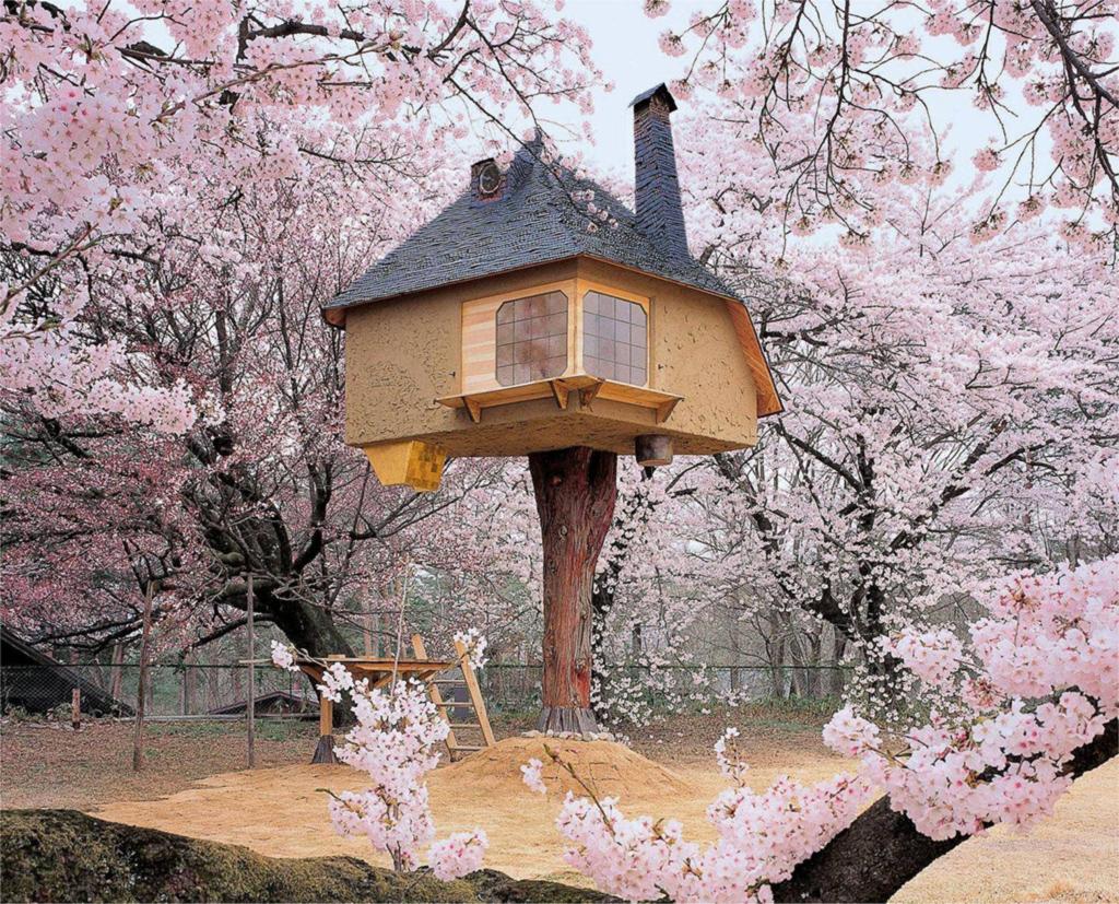 Tetsu Tree House