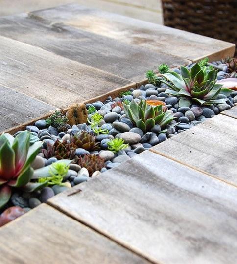 Built-in Succulents