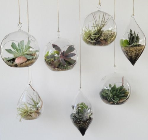 Hang with Different Containers