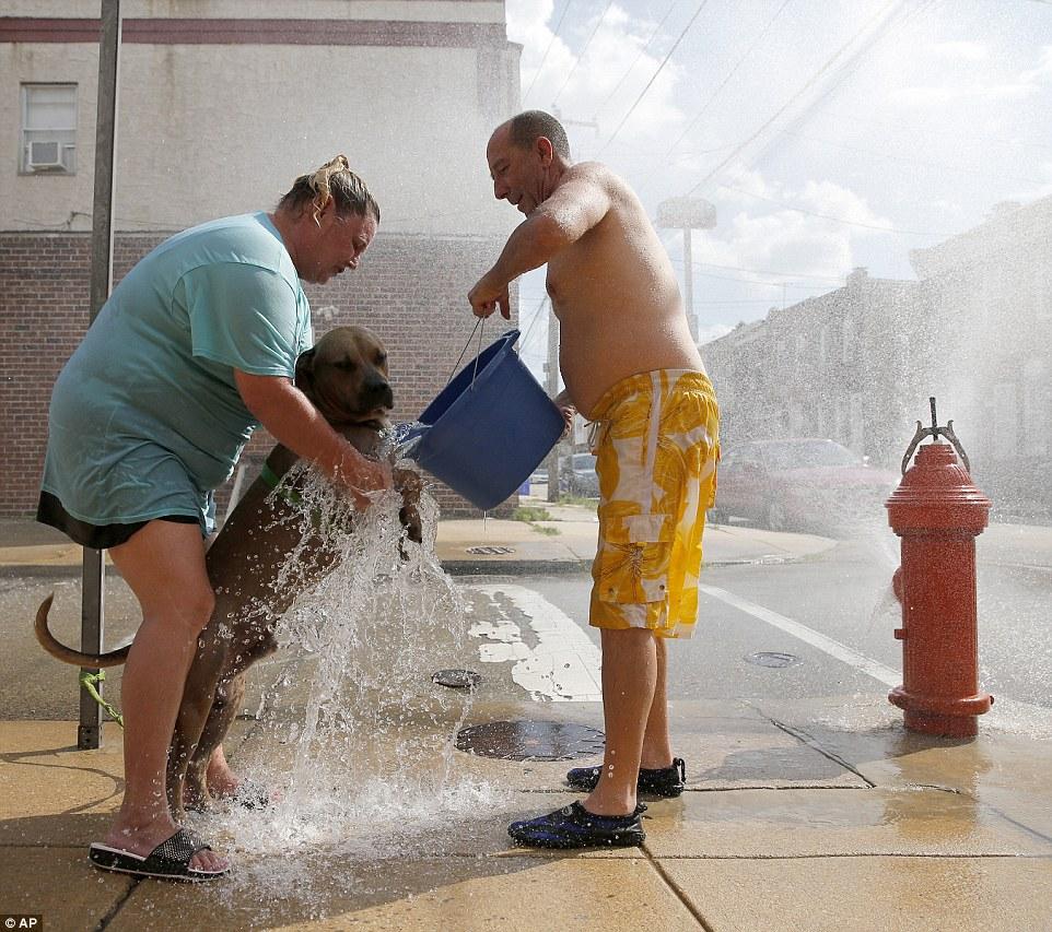 Arizona Heat Wave: A Cruel Summer