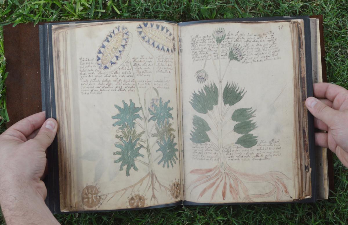 Impossible-things-Voynich-manuscript.jpg