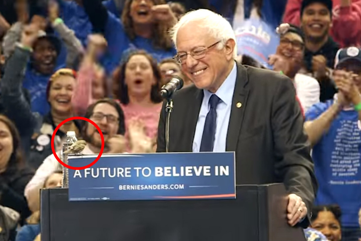 Bernie Sanders and the Bird