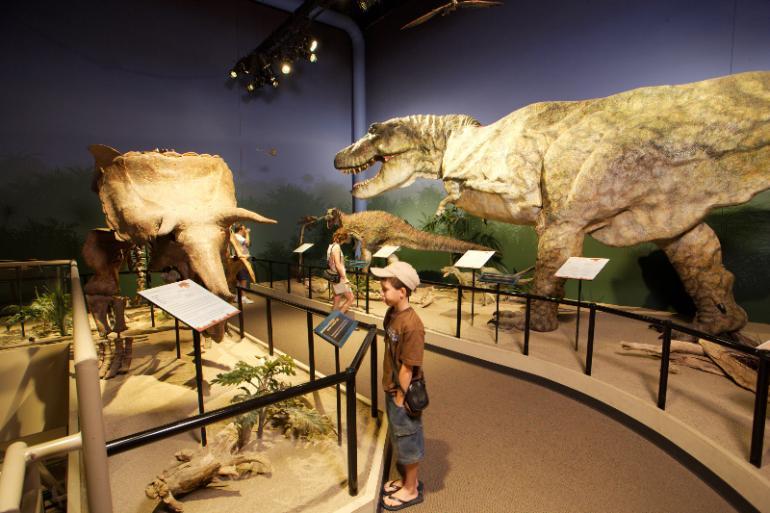 creationmuseum.jpg