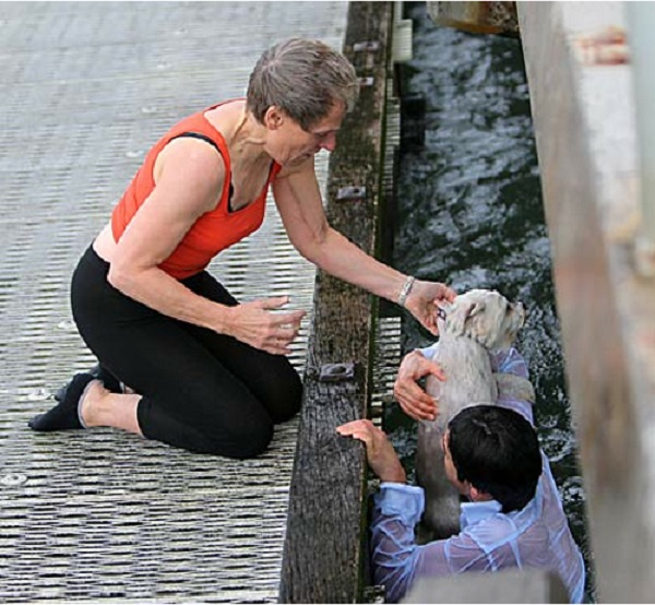 Australian Dog Saver