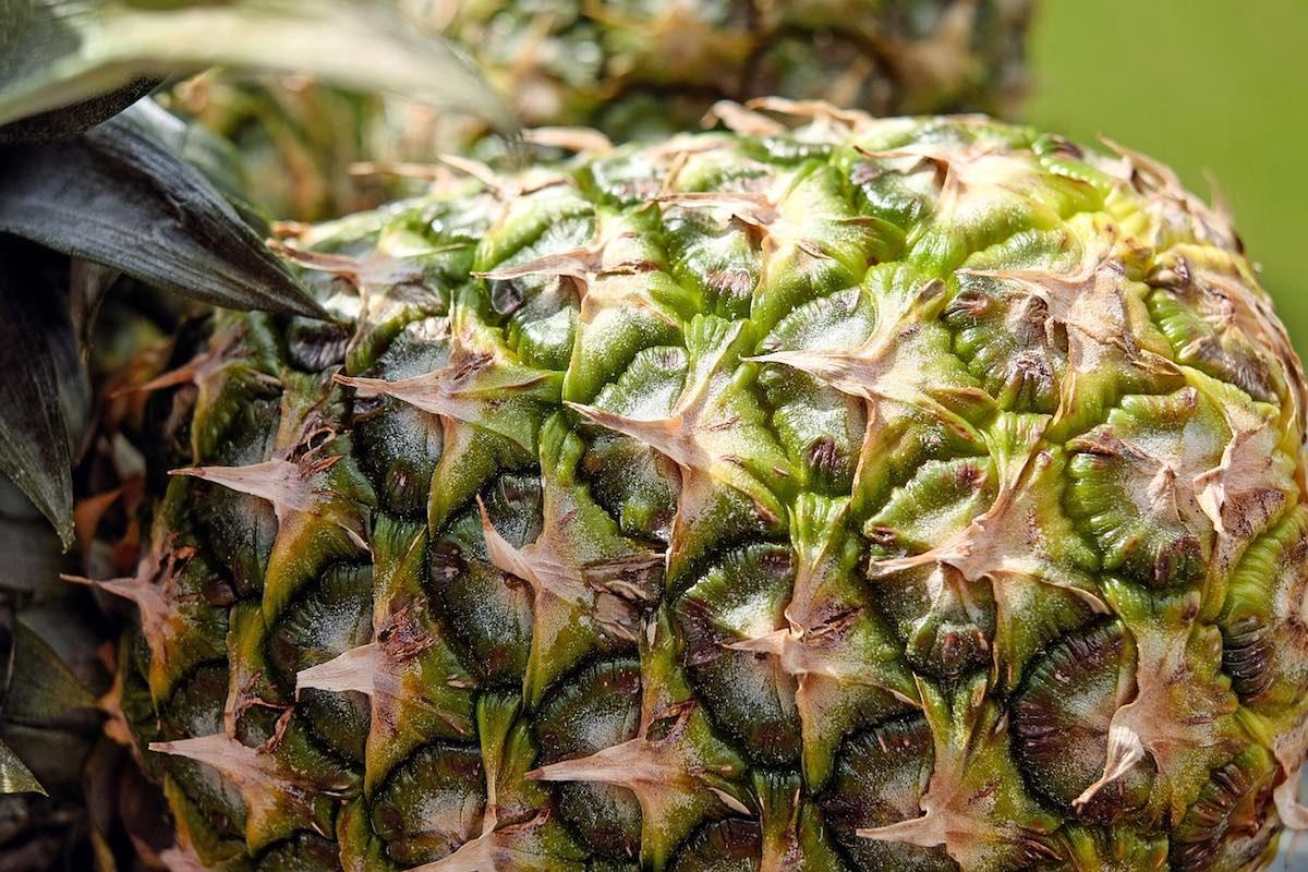 A Strange Pineapple Soup Concoction
