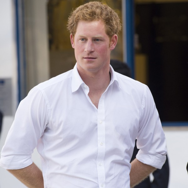 Prince Harry Doesn't Want To Be King, At All