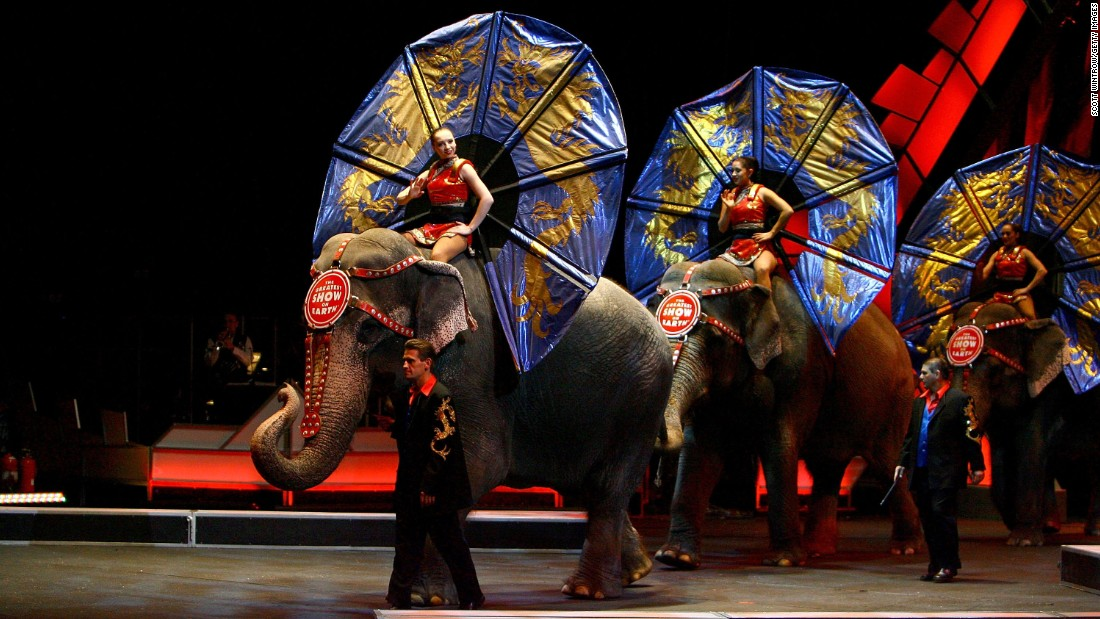 Other Countries Have Banned the Circus