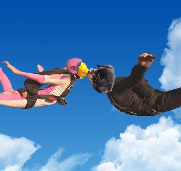 Skydiving Romantics