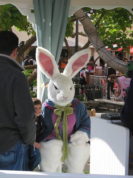 The Angry Bunny