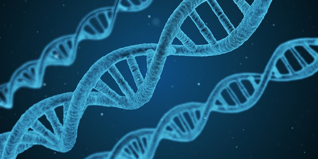 A DNA Match