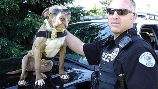 kiah-police-dog-with-partner.jpg