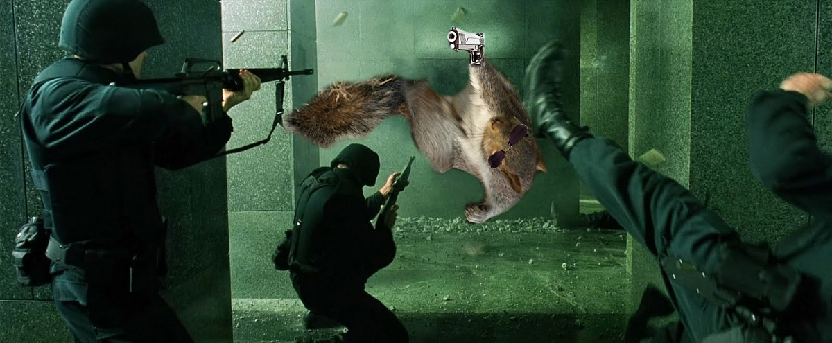 The Squirreltrix