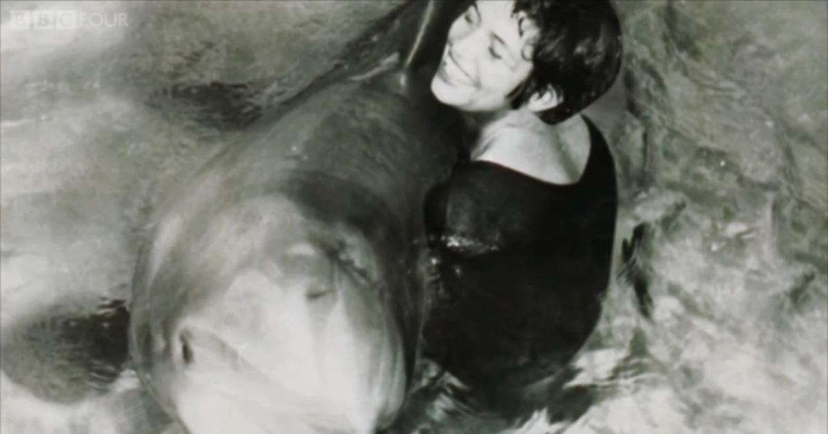 The Lady Who Lived With A Dolphin