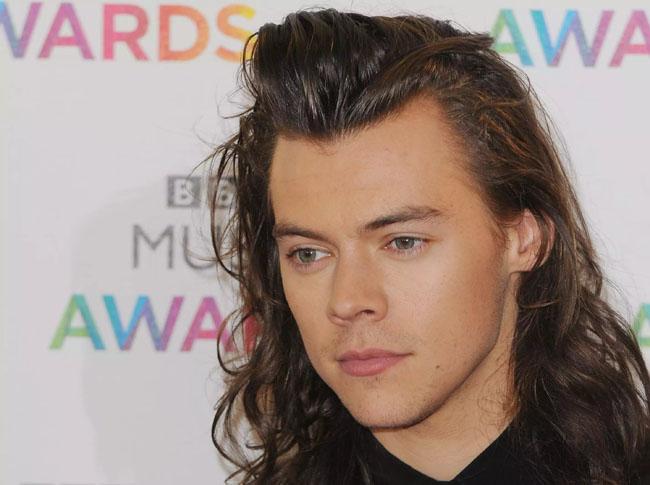 Harry Styles- $23 Million