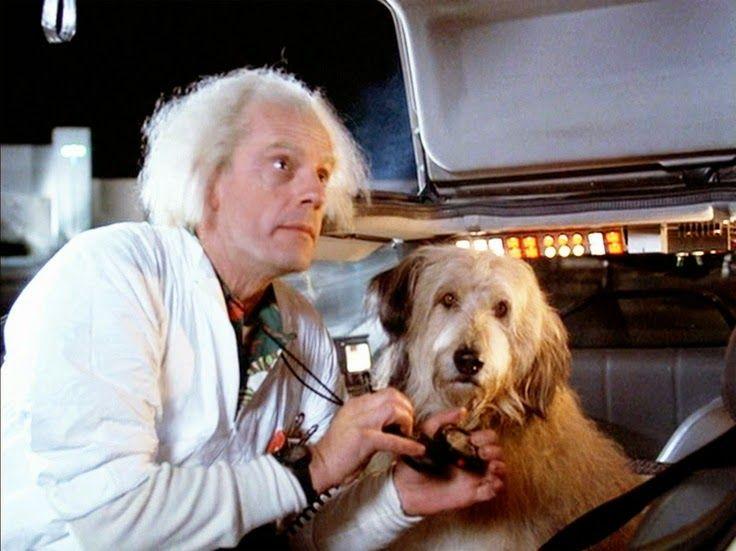 Doc Brown Nearly Had a Pet Chimpanzee