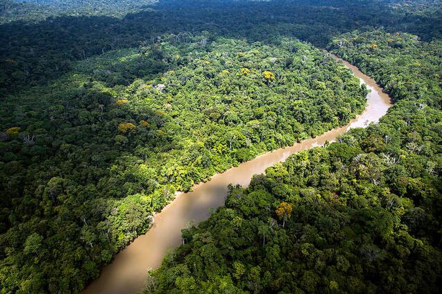 The Amazon: Then